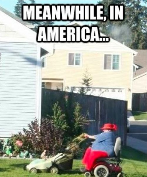 "The Best ""Meanwhile, In America"" Has to Offer"