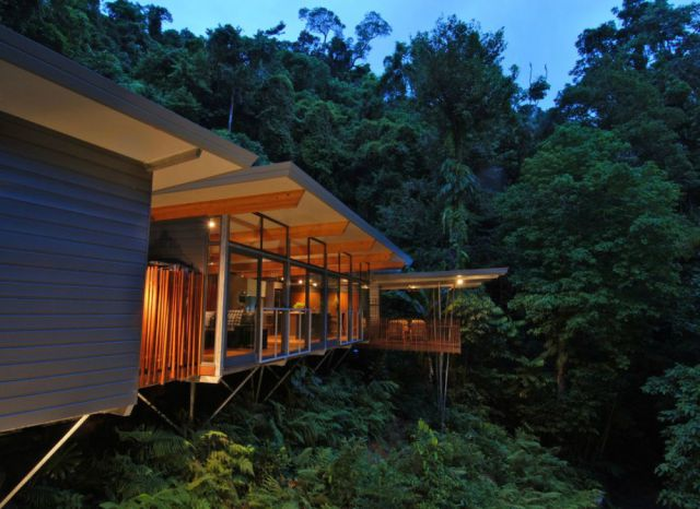 Incredible Forest House Everyone Would Dream Of