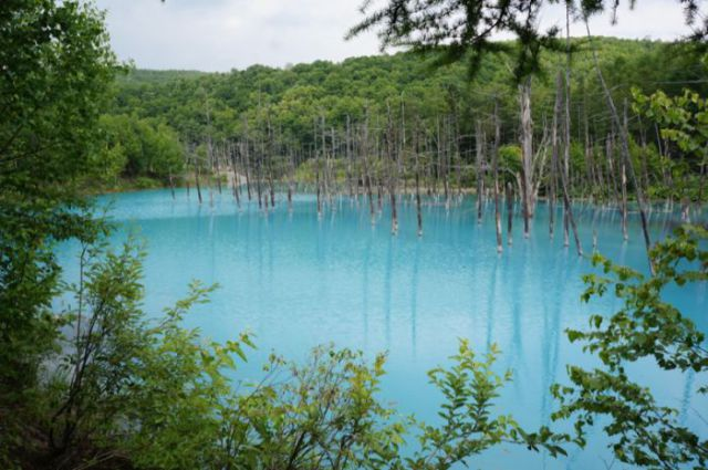 Fantastic Blue Pond in Japan