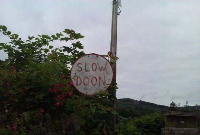 Public Signs: WTF? Part 17