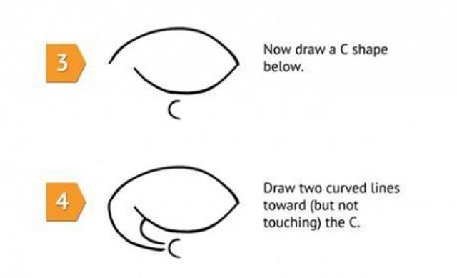How to Draw a Funny Shark