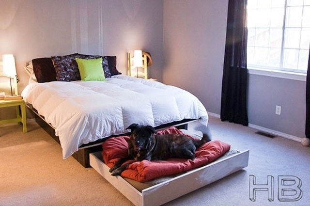 Diy Dog Bed For Two