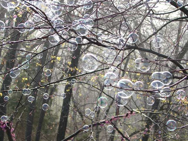 A Tree of Bubbles