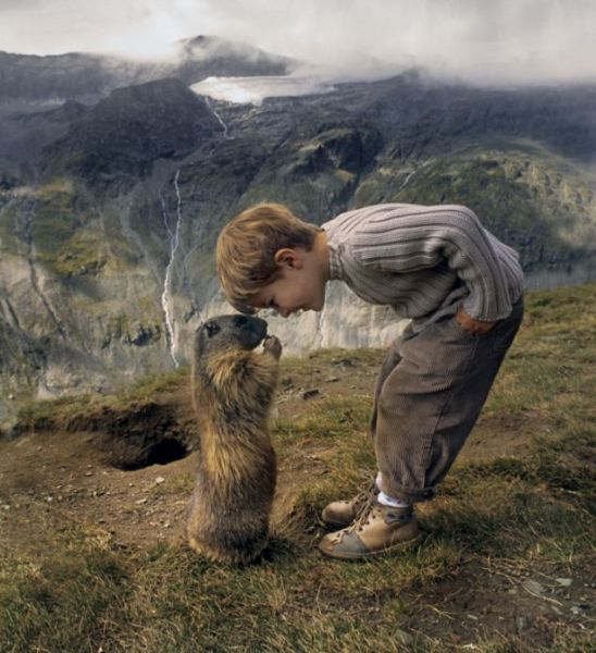 Amazing Friendship of a Boy and Marmots