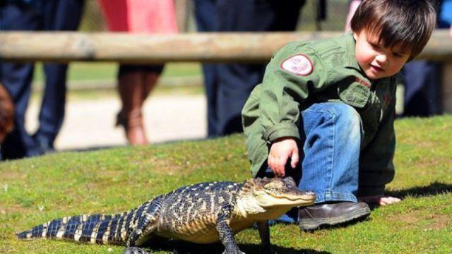 Australian Toddler Is a Real Snake Charmer