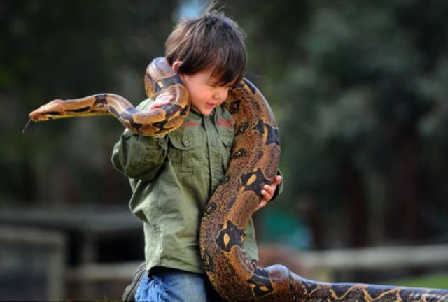 Australian Toddler Is a Real Snake Charmer