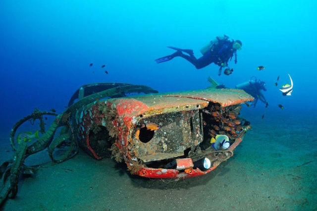 Wrecked Cars Turned Into Coral Reefs