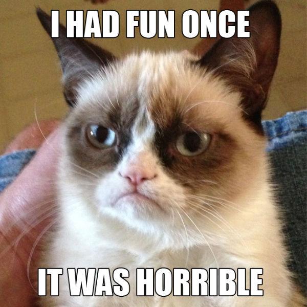 "Funny ""Grumpy Cat"" Meme Selection"