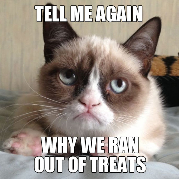 Funny Pictures Meme Cats : Angry cat quotes quotesgram