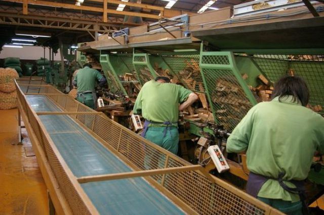 How They Make Cork