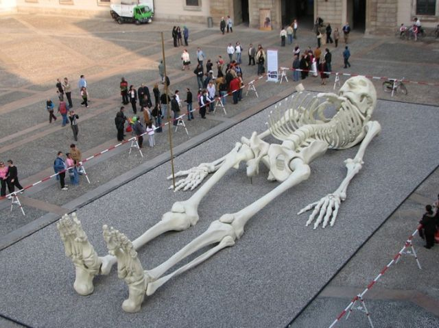 The Giant Traveling Skeleton (5 pics)