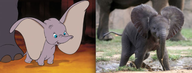 Adorable Disney Animals Brought to Life
