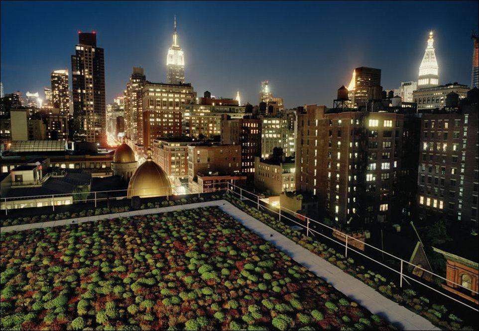 На крышах многоэтажных домов 43 фото