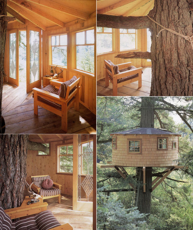 "A Childhood Fantasy Come True: Tree Houses for ""Grown Kids""!"