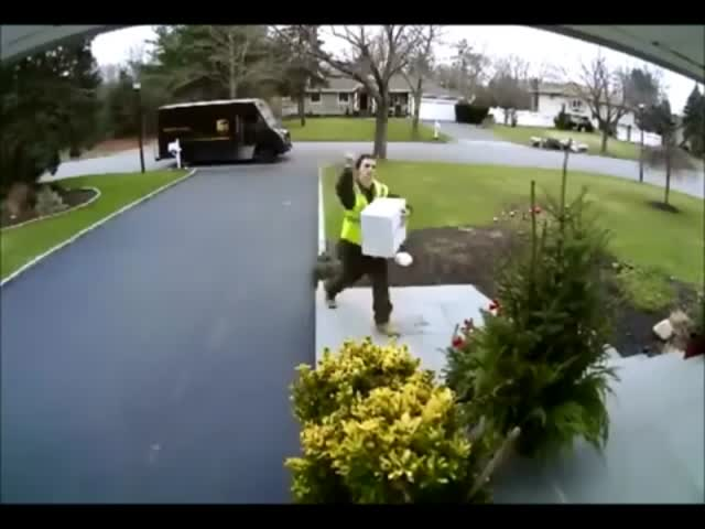 Angry and Lazy Couriers Compilation