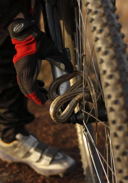 Cyclist Stops for Surprising and Unusual Hitchhiker…