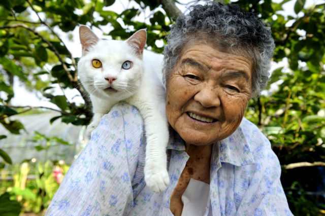 http://img.izismile.com/img/img5/20121109/640/special_friends_granny_and_her_cat_640_21.jpg
