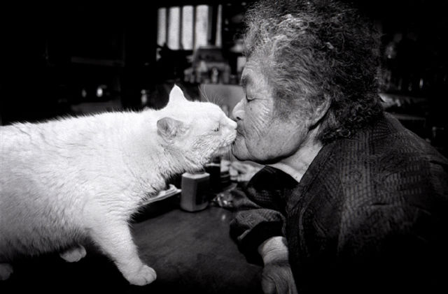 Special Friends: Granny and Her Cat