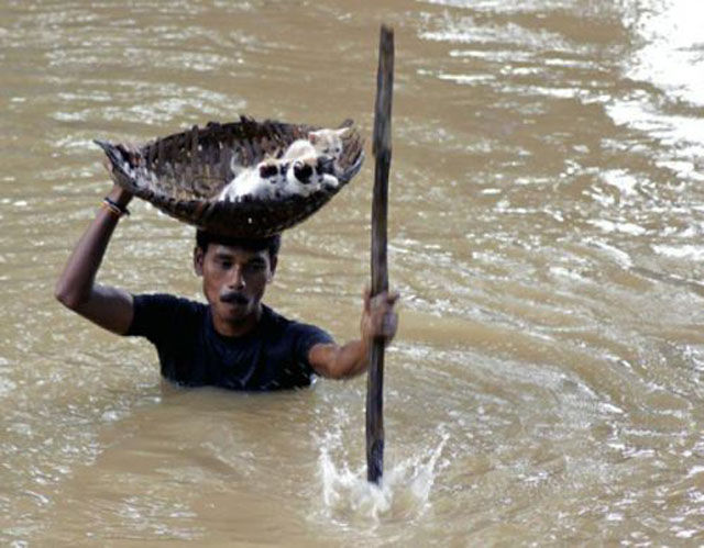 Inspiring Photos That Will Restore Your Faith in Humanity