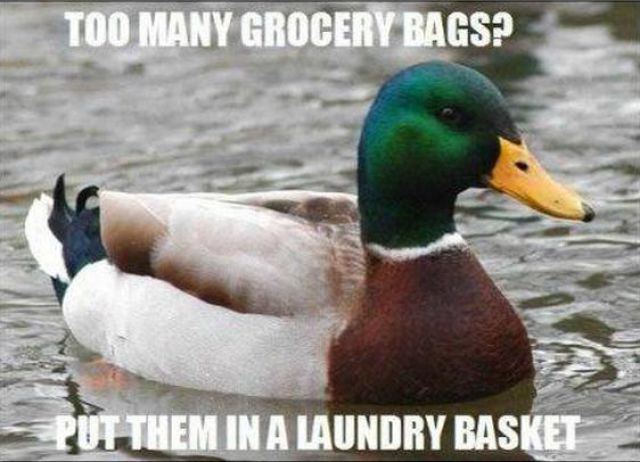 "The Funniest of the ""Actual Advice Mallard"" Meme"