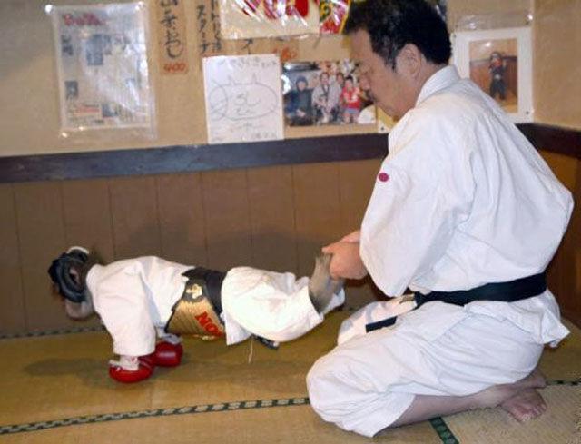 Fighting Monkey in Training