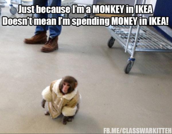 The Stylish Ikea Monkey