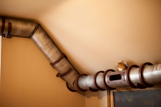 Can You Guess What This Pipe Is Used For?