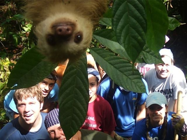 The Most Awesome Photobombs of 2012