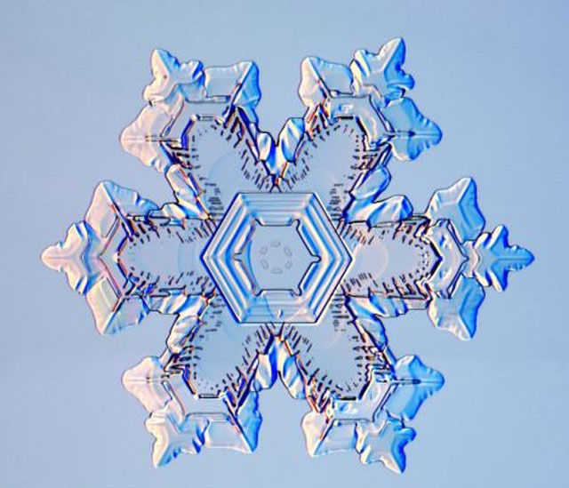 The Beauty of Snowflakes Up Close
