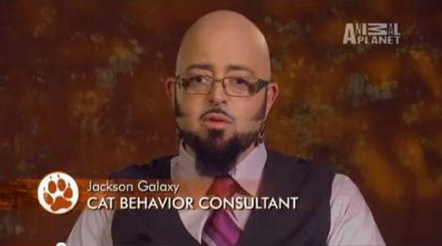 Some of The All Time Best Job Titles