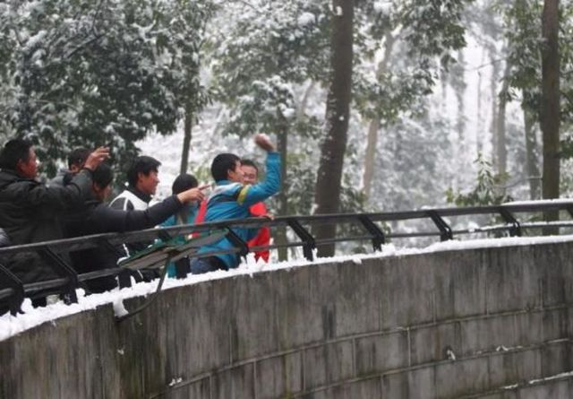 Stupid People in a Chinese Zoo