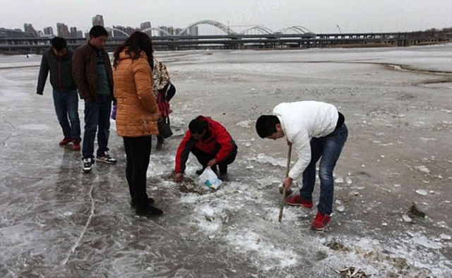 Winter Fishing Level: Chinese