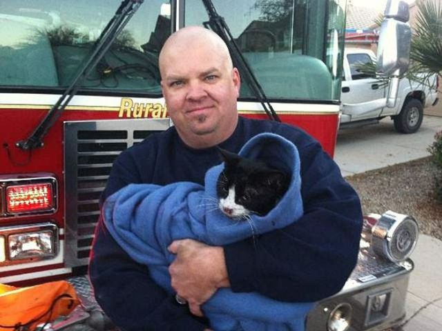 Firemen Rescue Cat from Arizona House Fire
