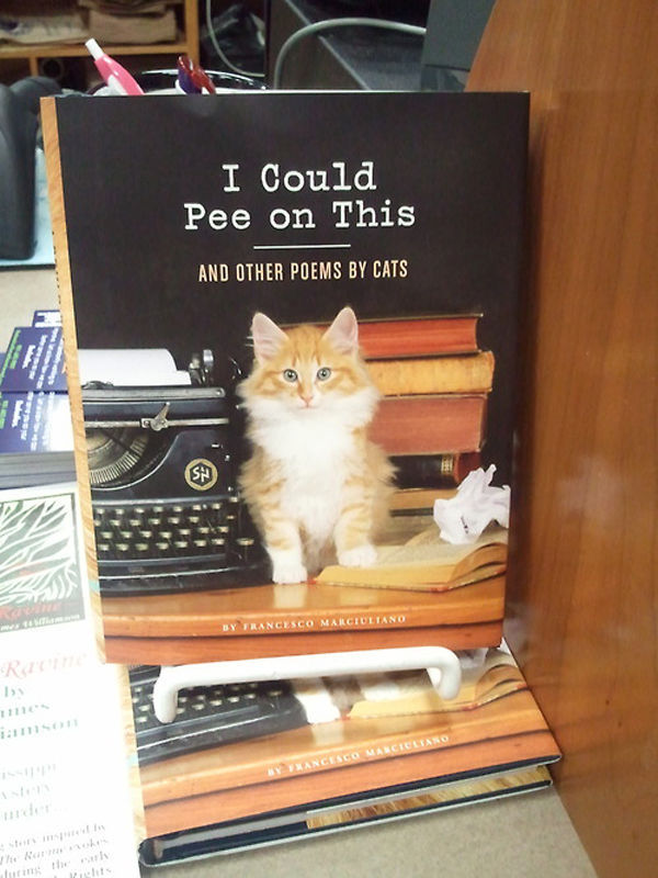 Did You Know Cats Write Poetry?