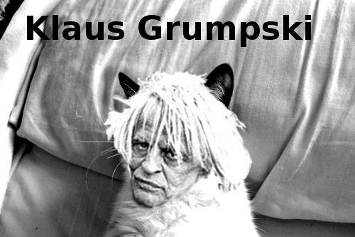 Grumpy Cat becomes more grumpy