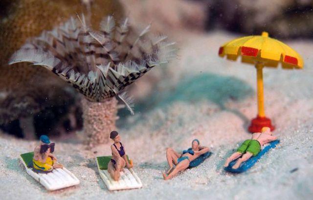 Funny Underwater Photo Stories