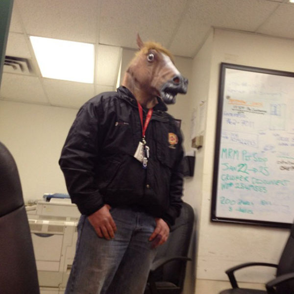 Make Every Work Day Horseplay