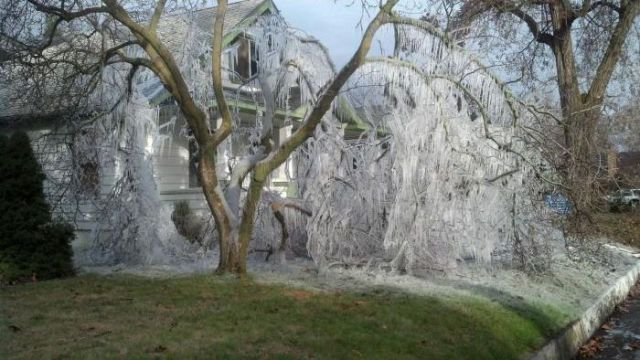 A Lesson Learned: Don't Use a Sprinkler in Winter