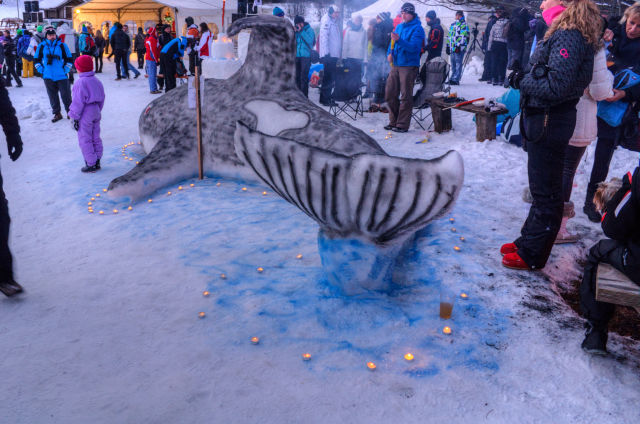 Snow Craft Contest