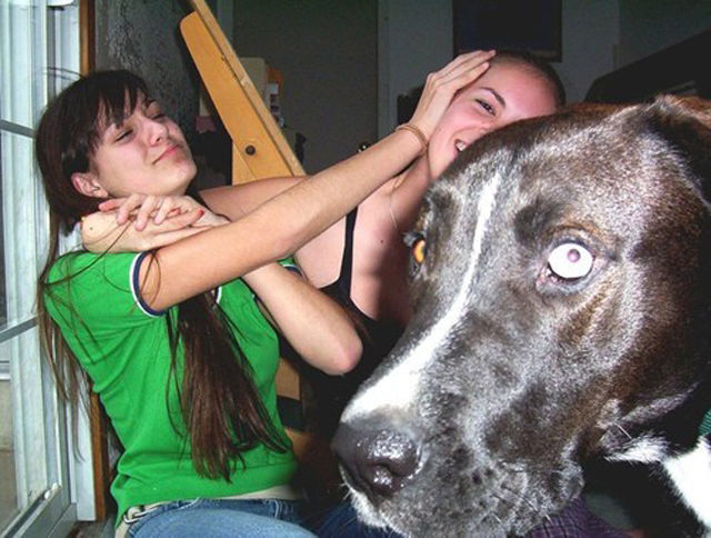 How to Spoil a Photo. Part 23