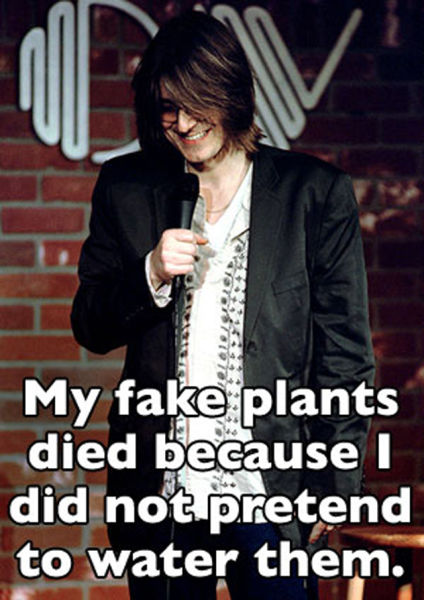 Plant Quotes Funny Hilarious