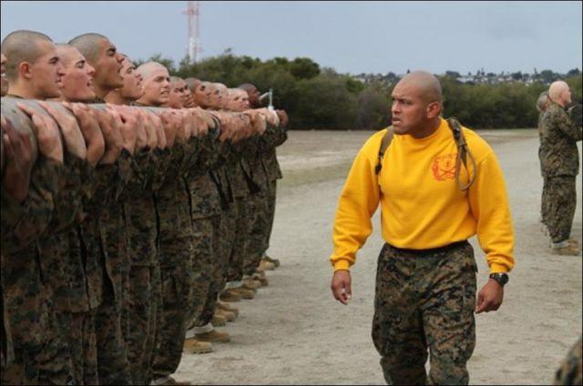 Expressive And Emotive Sergeant Faces 17 Pics Izismile Com