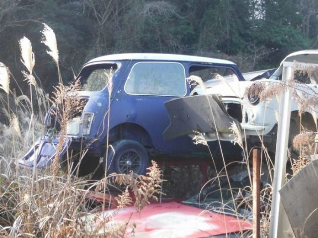 Mass Vintage Car Graveyard in Japan