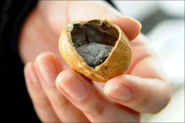 A Strange Case of Counterfeit Walnuts in China