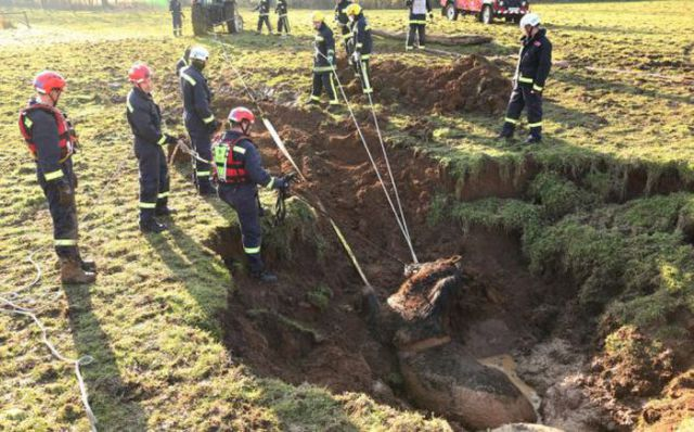 Firemen Rescue Horse from Mudslide