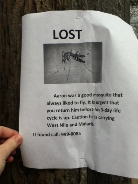 Clever Variations of the Average Lost and Found Sign