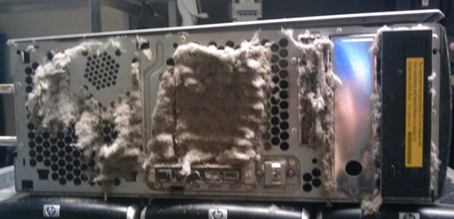 The Disgusting Things Found Inside PCs