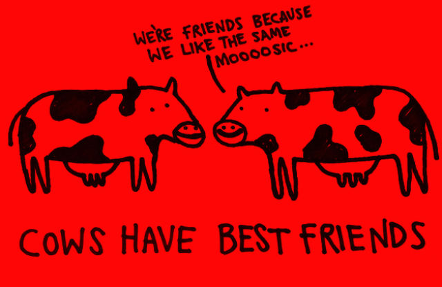 Fun Facts That Will Improve Your Mood