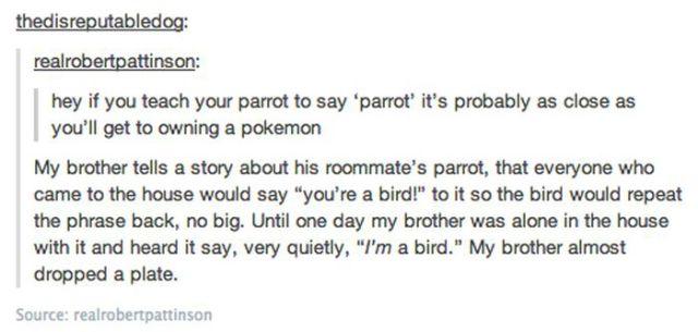 The Strangest Conversations Found on Tumblr