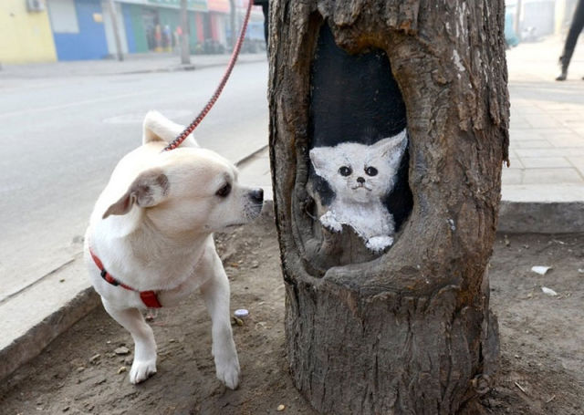 Painted Tree Holes are Inspired Works of Art
